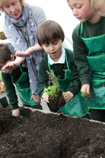 Outdoor Learning Image 1